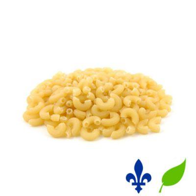 macaroni blé blanc bio